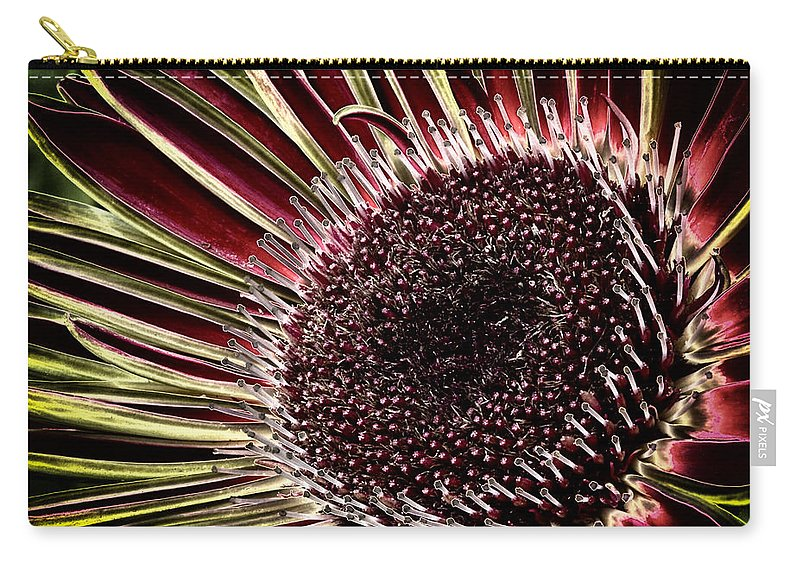 Flower Carry-all Pouch featuring the photograph Daisy Unleashed by Robert Woodward