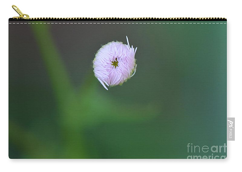Honey Carry-all Pouch featuring the photograph Daisy Weed Bud Series Photo C by Barb Dalton