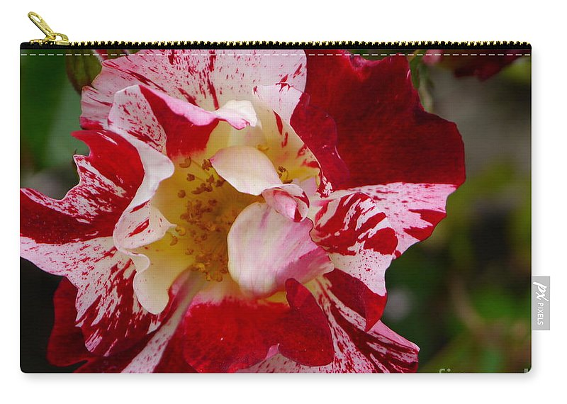 Rose Carry-all Pouch featuring the photograph Dali's Rose by Christiane Schulze Art And Photography