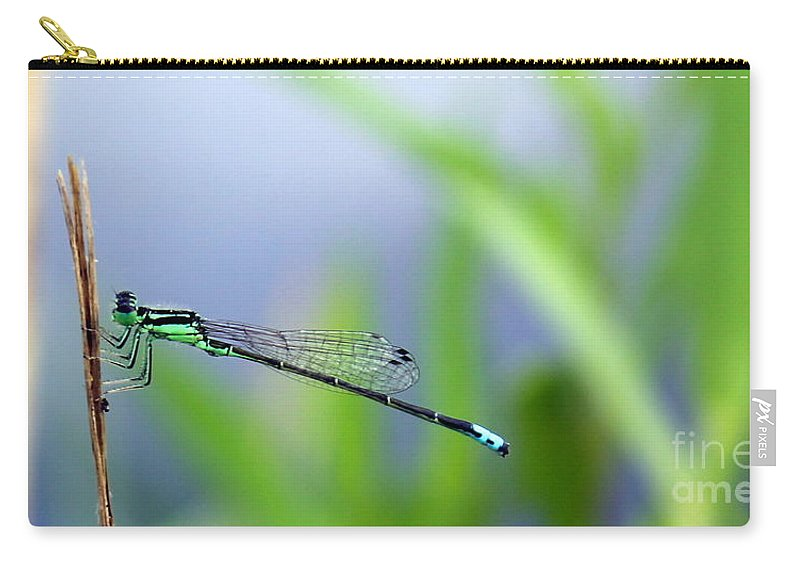 Damselfly Carry-all Pouch featuring the photograph Dameselfly Study by Renee Croushore