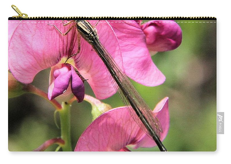 Damselfly Carry-all Pouch featuring the photograph Damselfly On Sweet Pea by Doris Potter