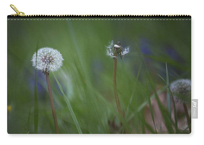 Dandelion Carry-all Pouch featuring the photograph Dandelion by Belinda Greb