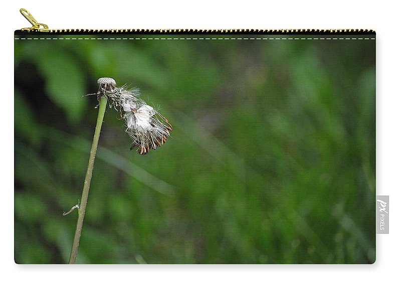 Dandelion In The Wind Carry-all Pouch featuring the photograph Dandelion In The Wind by Lisa Phillips