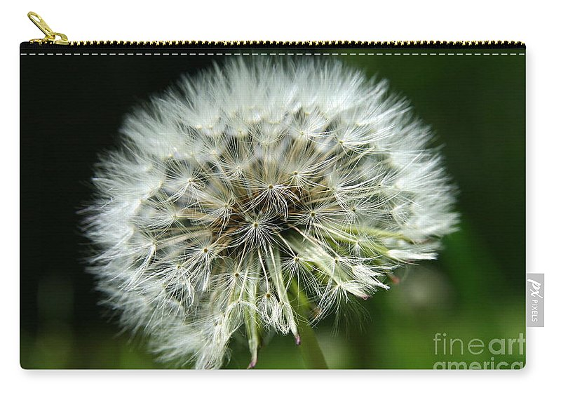 Seed Carry-all Pouch featuring the photograph Dandelion Ready by Neal Eslinger