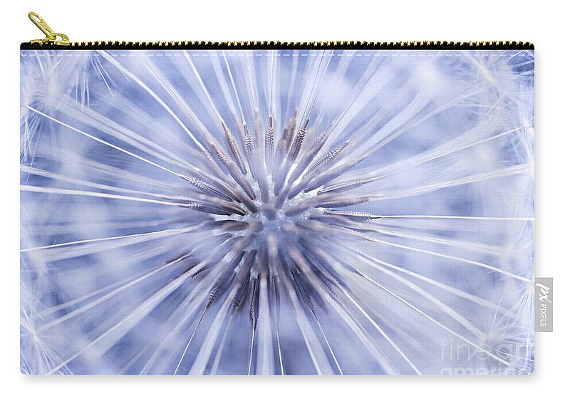 Dandelion Carry-all Pouch featuring the photograph Dandelion Seeds by Elena Elisseeva
