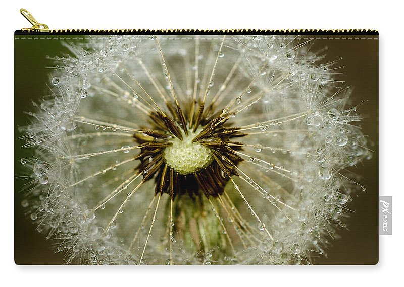 Background Carry-all Pouch featuring the photograph Dandelion by TouTouke A Y