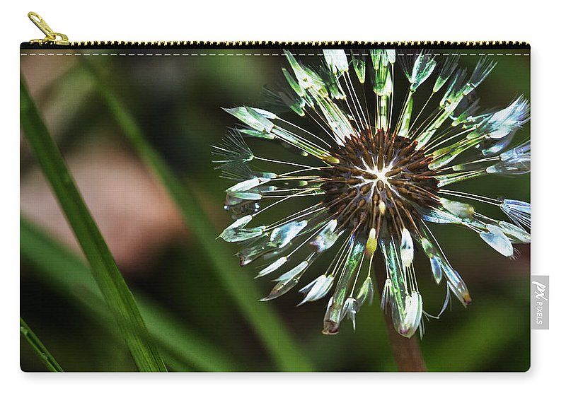 Dandelion Carry-all Pouch featuring the photograph Dandelion Will Make You Wise by Belinda Greb