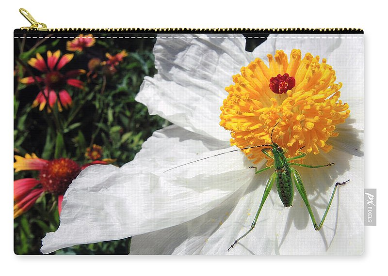 Dandy Carry-all Pouch featuring the photograph Dandy by Skip Hunt