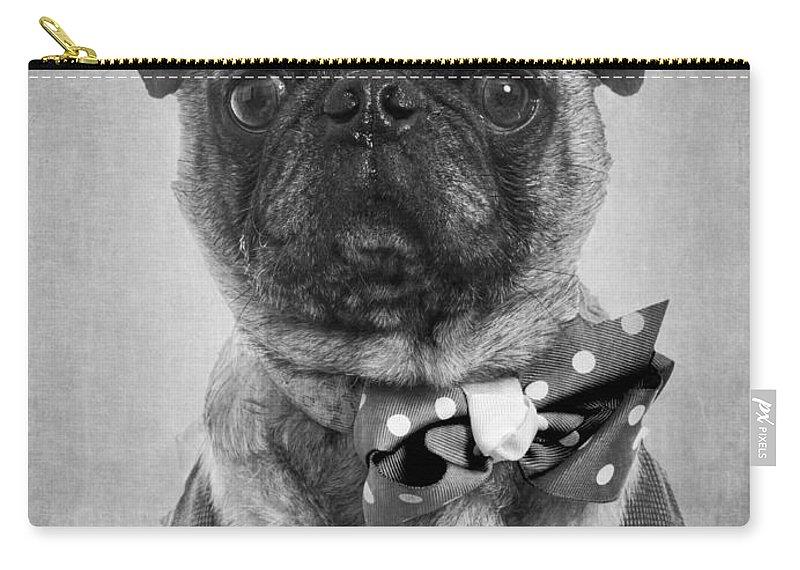 Dapper Dog Carry-all Pouch