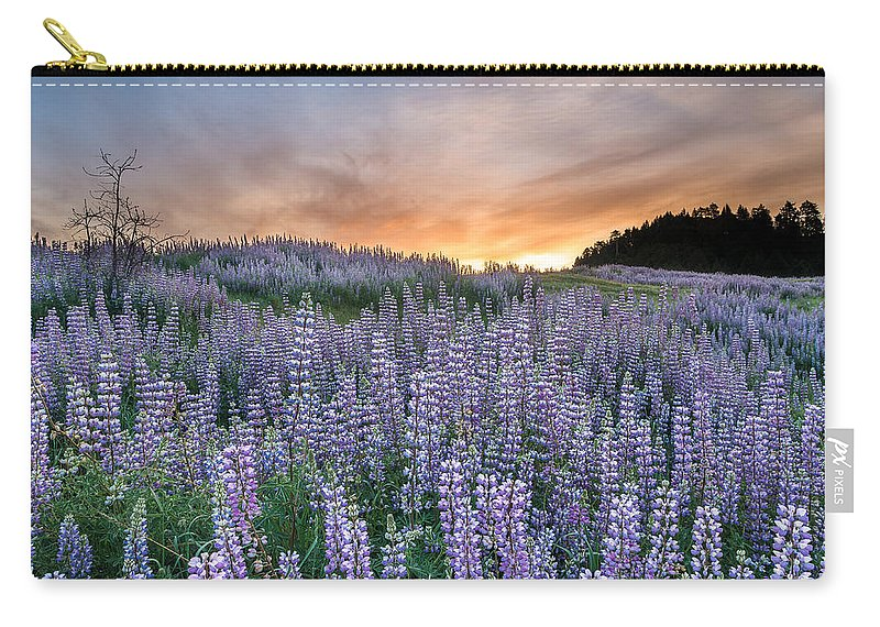 Lupine Carry-all Pouch featuring the photograph Dawn Of Lupine by Greg Nyquist