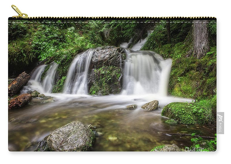 Forest Carry-all Pouch featuring the photograph Day 1000 - Lower Forest Glen Falls by Charlie Duncan