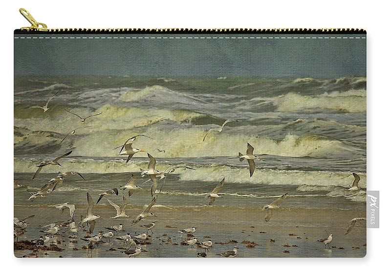Terns Carry-all Pouch featuring the photograph Day For The Birds by Deborah Benoit