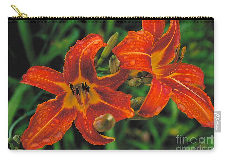 Day Lilly Carry-all Pouch featuring the photograph Day Lilly by William Norton