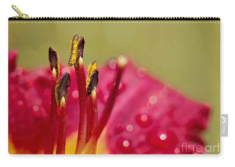 Flower Carry-all Pouch featuring the photograph Day Lily Dew by Pam Holdsworth