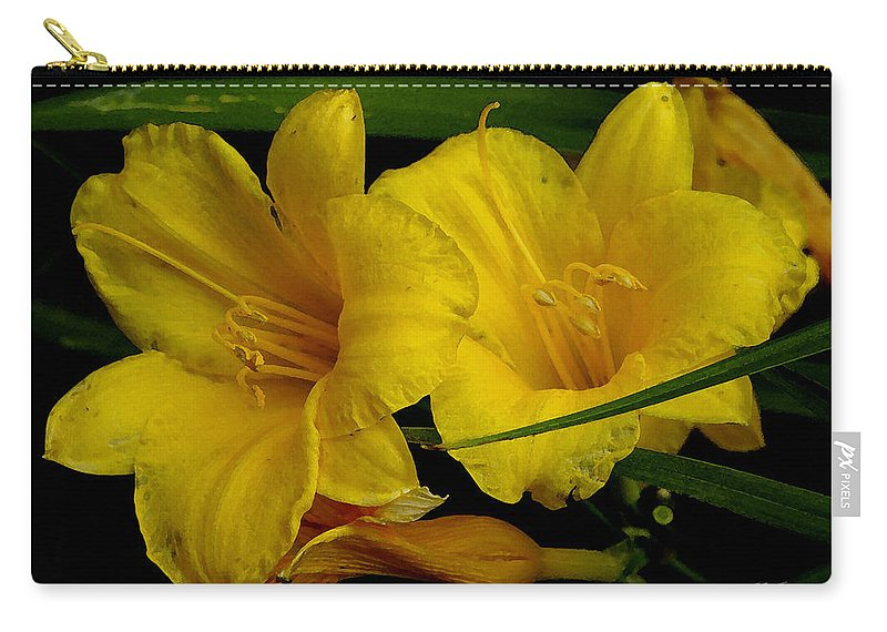Lily Carry-all Pouch featuring the photograph Day Of The Lilies by James C Thomas