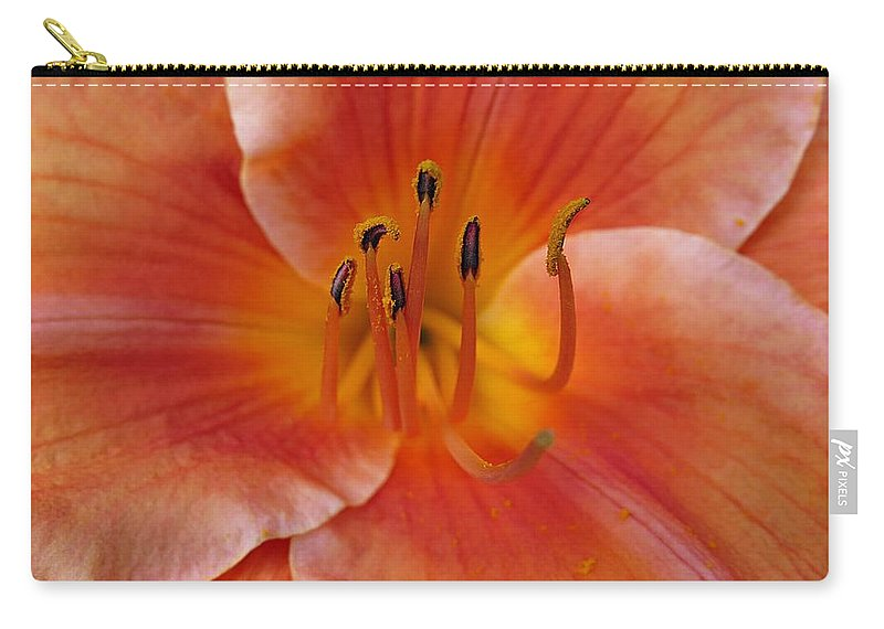 Daylily Carry-all Pouch featuring the photograph Daylily Bloom by MTBobbins Photography