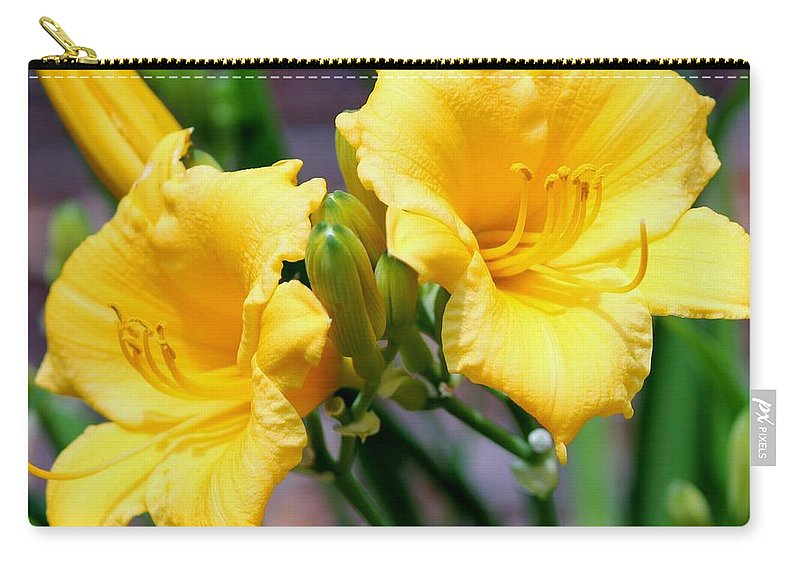 Daylily Carry-all Pouch featuring the photograph Daylily by Cynthia Guinn