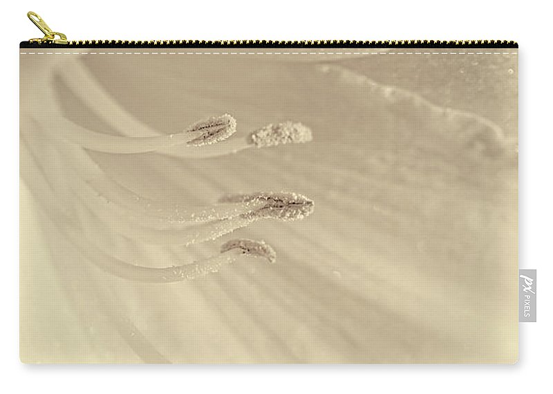 Daylily Carry-all Pouch featuring the photograph Daylily Flower Soft Brown by Jennie Marie Schell