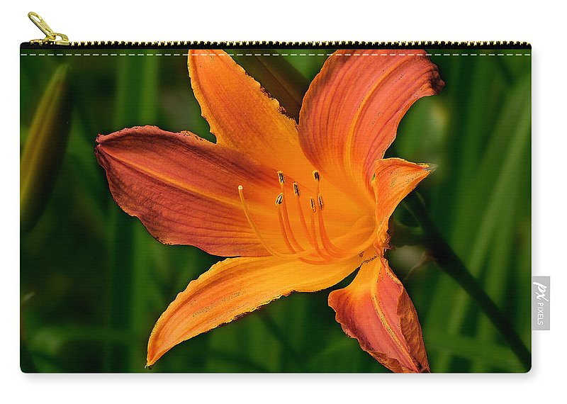 Daylily Carry-all Pouch featuring the photograph Daylily II by C H Apperson