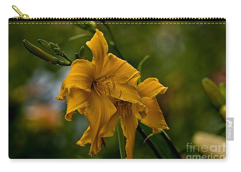 Daylily Carry-all Pouch featuring the photograph Daylily Picture 474 by World Wildlife Photography