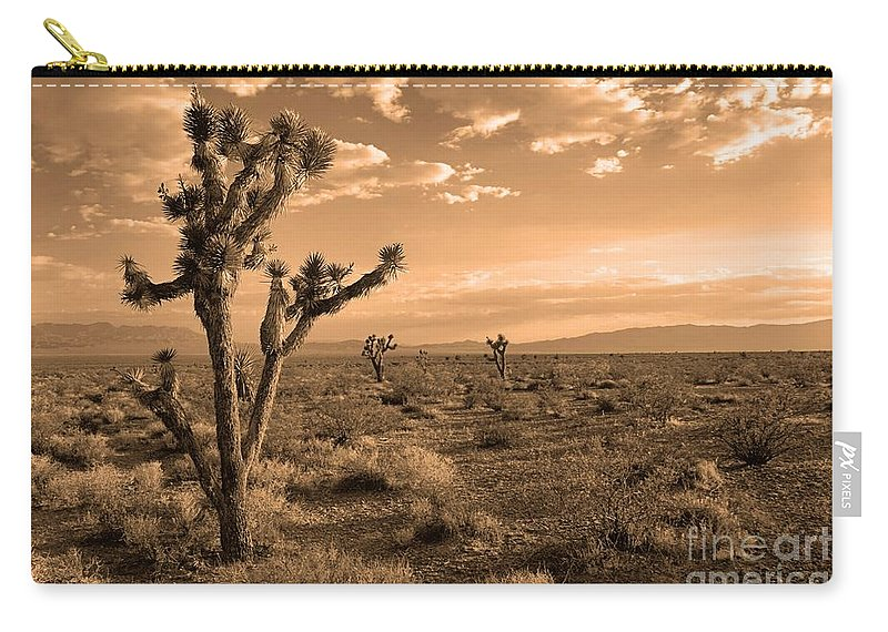 Death Valley Carry-all Pouch featuring the photograph Death Valley Solitude by James Anderson