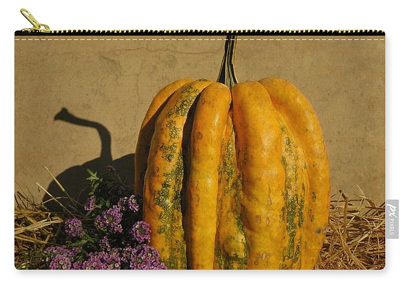 Pumpkin Carry-all Pouch featuring the photograph Decorative Gourd by Chris Berry