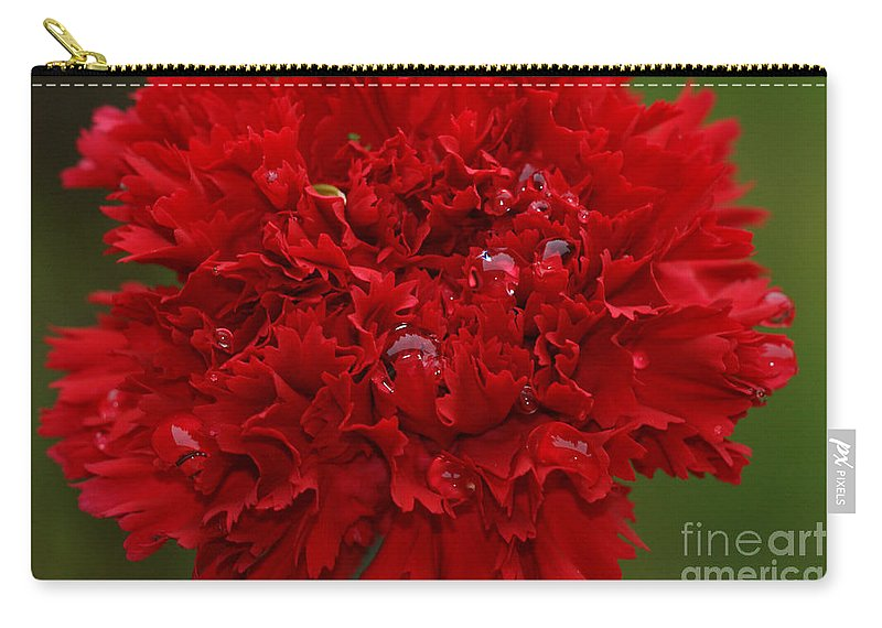 Red Carry-all Pouch featuring the photograph Deep Red Carnation 2 by Carol Lynch