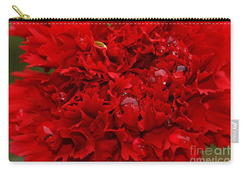 Red Carry-all Pouch featuring the photograph Deep Red Carnation by Carol Lynch