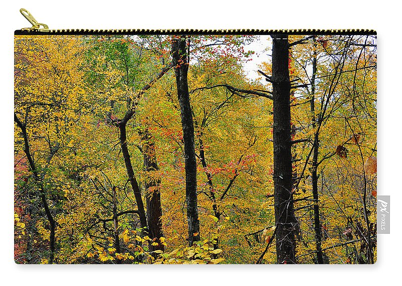 Woods Carry-all Pouch featuring the photograph Deep Woods by Todd Hostetter
