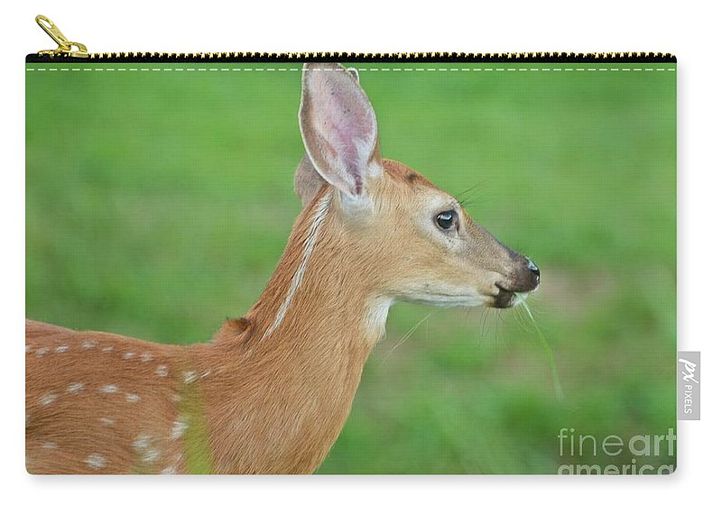 Deer Carry-all Pouch featuring the photograph Deer 14 by Cassie Marie Photography