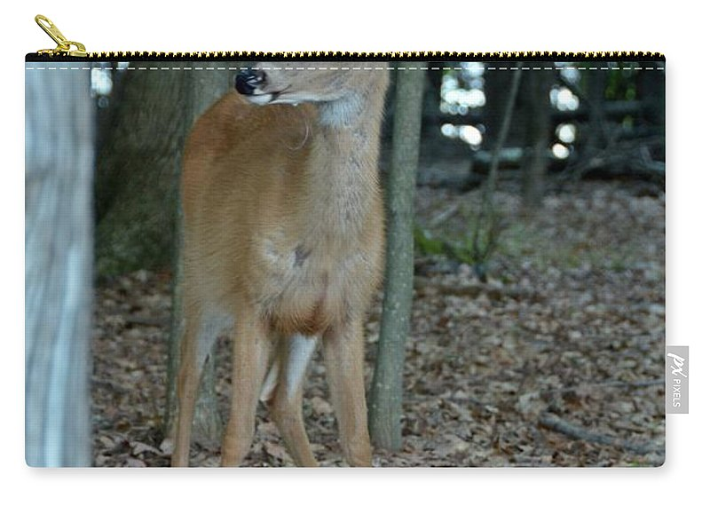 Deer Carry-all Pouch featuring the photograph Deer 3 by Cassie Marie Photography