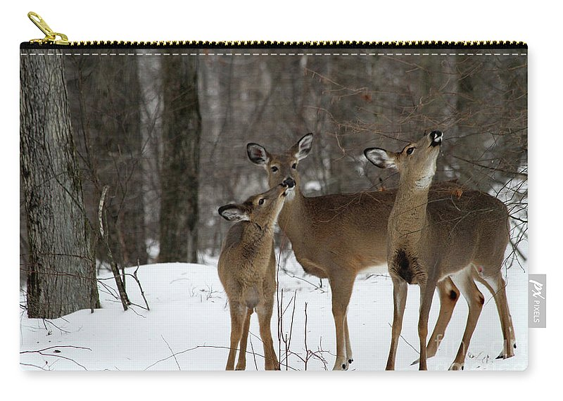 Deer Carry-all Pouch featuring the photograph Deer Affection by Karol Livote