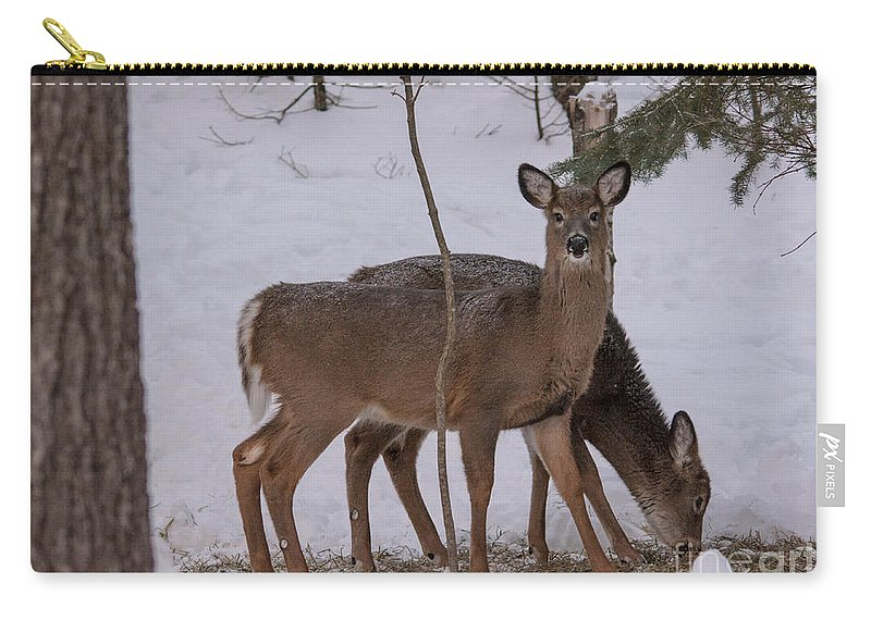 Carry-all Pouch featuring the photograph Deer In The Trees by Cheryl Baxter