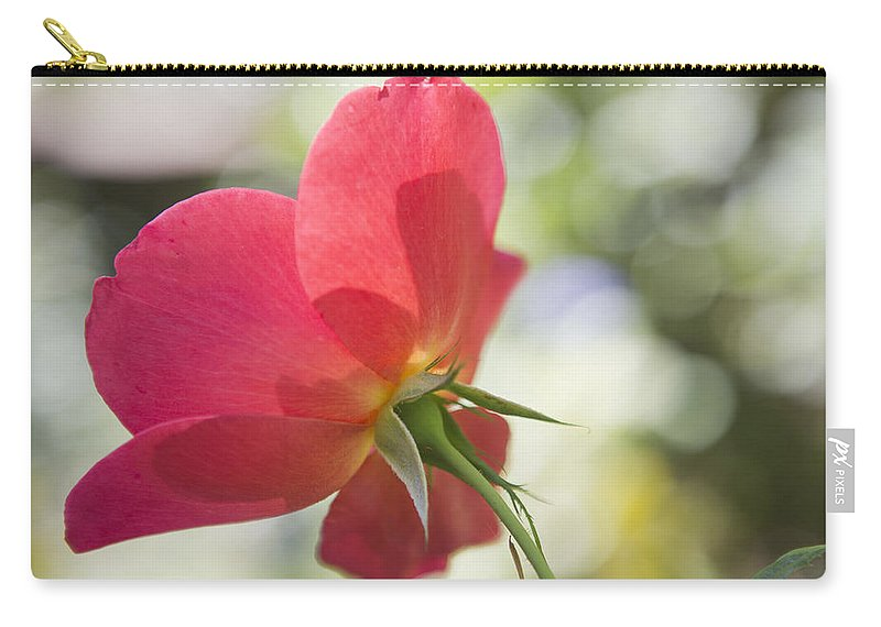 Rose Carry-all Pouch featuring the photograph Delicacy by Belinda Greb