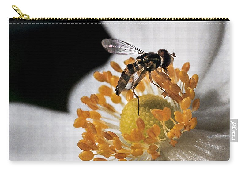 Hoverfly Carry-all Pouch featuring the photograph Delicate by Caitlyn Grasso