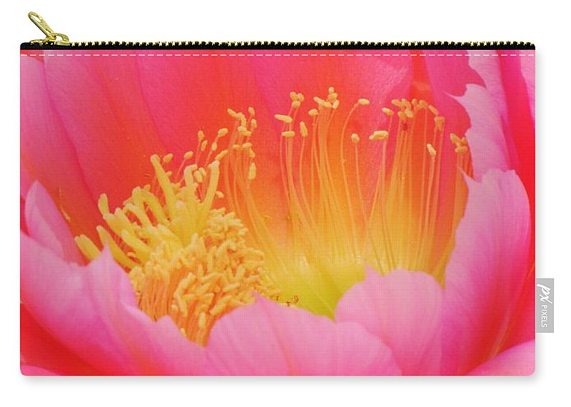 Cactus Flower Carry-all Pouch featuring the photograph Delicate Pink Cactus Flower by Michelle Cassella