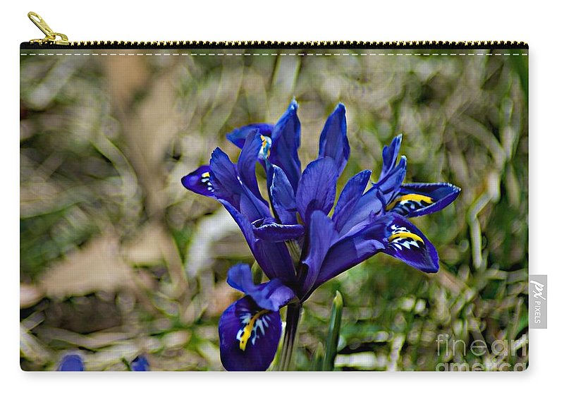 Cayauga Heights Carry-all Pouch featuring the photograph Delicate Sun by Joseph Yarbrough