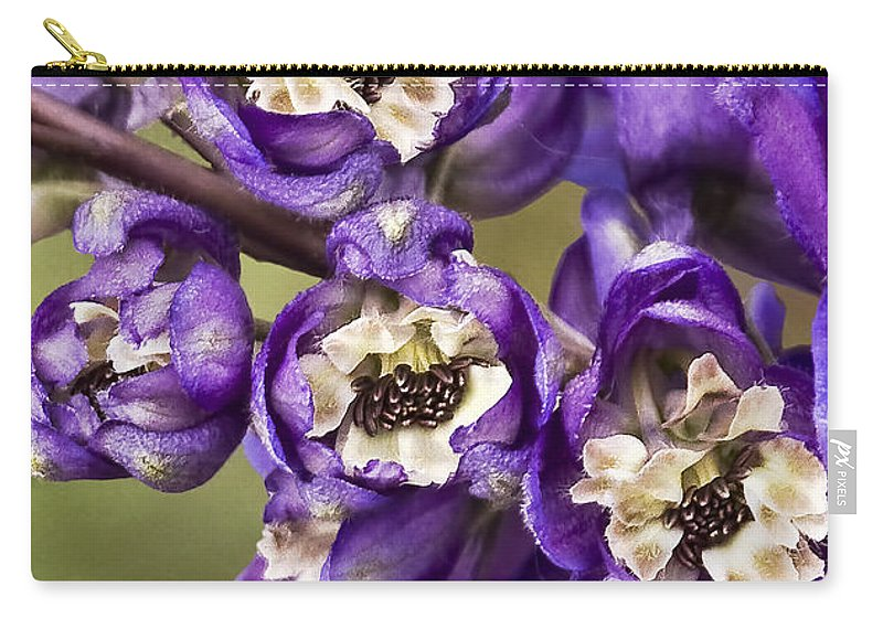 Delphinium Carry-all Pouch featuring the photograph Delphinium by Marcia Colelli