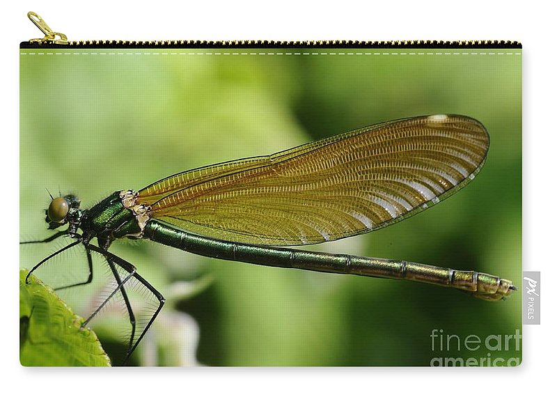 Demoiselle Carry-all Pouch featuring the photograph Demoiselle by Jenny Potter