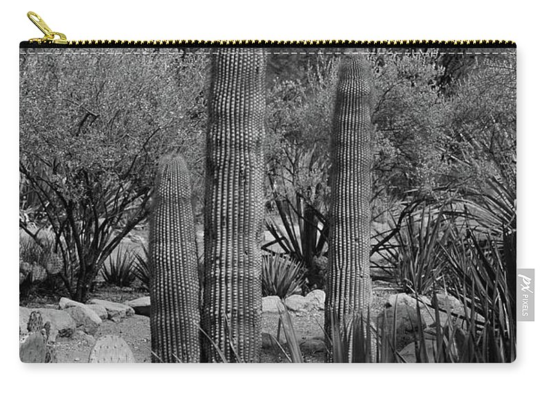 Desert Carry-all Pouch featuring the photograph Desert Cactus by Kathleen Struckle