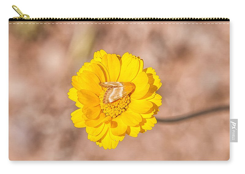 America Carry-all Pouch featuring the photograph Desert-marigold Moth by Rich Leighton