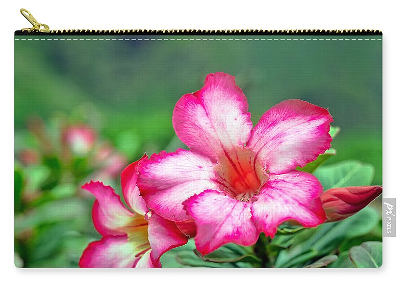 Hawaii Carry-all Pouch featuring the photograph Desert Rose At Kualoa by Dan McManus