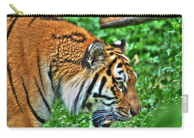 Animals Carry-all Pouch featuring the photograph Determination In The Tigers Stare by Michael Frank Jr