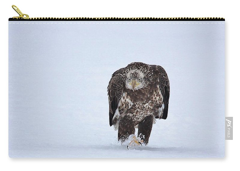 Bald Eagle Carry-all Pouch featuring the photograph Determination by Teresa McGill