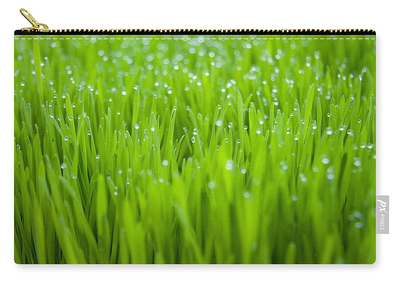 Dew Carry-all Pouch featuring the photograph Dew by Alexey Stiop
