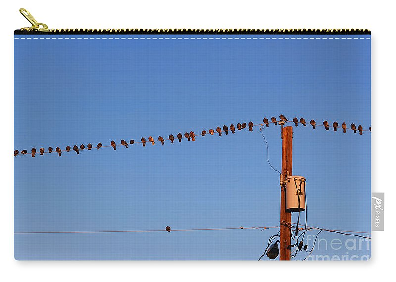 Birds Carry-all Pouch featuring the photograph Different by Jon Burch Photography