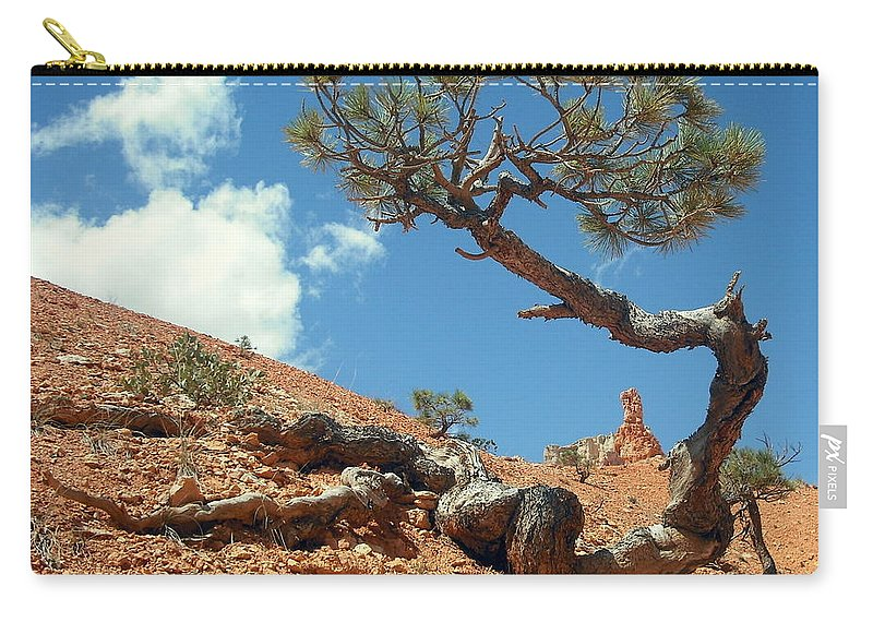Joshua Tree Carry-all Pouch featuring the photograph Digging In by J Allen