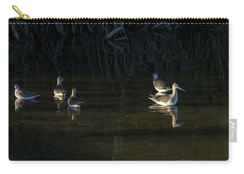 Sandpipers Carry-all Pouch featuring the photograph Digital Oil Of Sandpipers by Jorge Perez - BlueBeardImagery