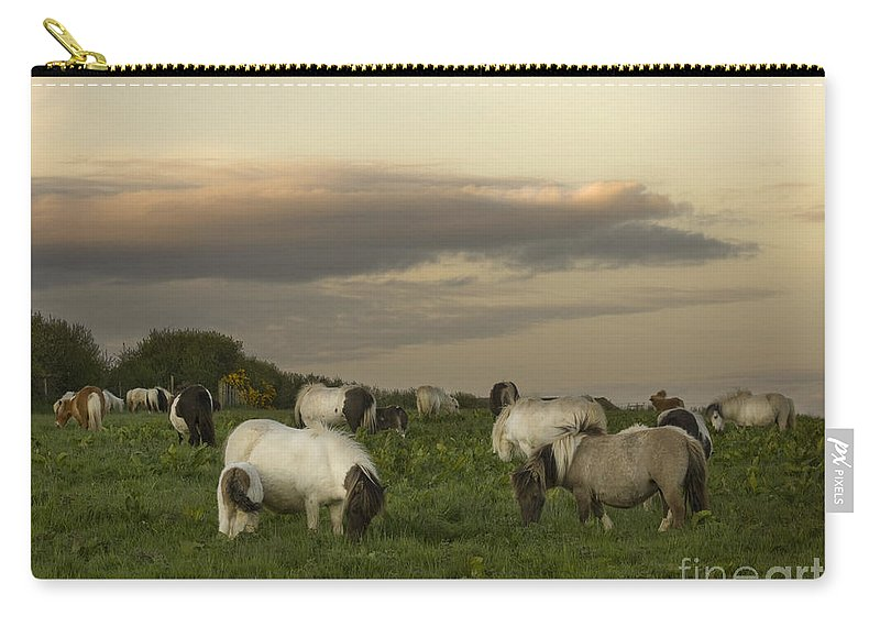 Ponies Carry-all Pouch featuring the photograph Dining Ponies by Angel Ciesniarska