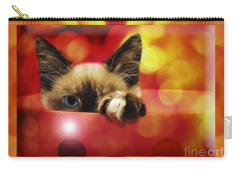 Andee Design Cats Carry-all Pouch featuring the photograph Disco Kitty 2 by Andee Design